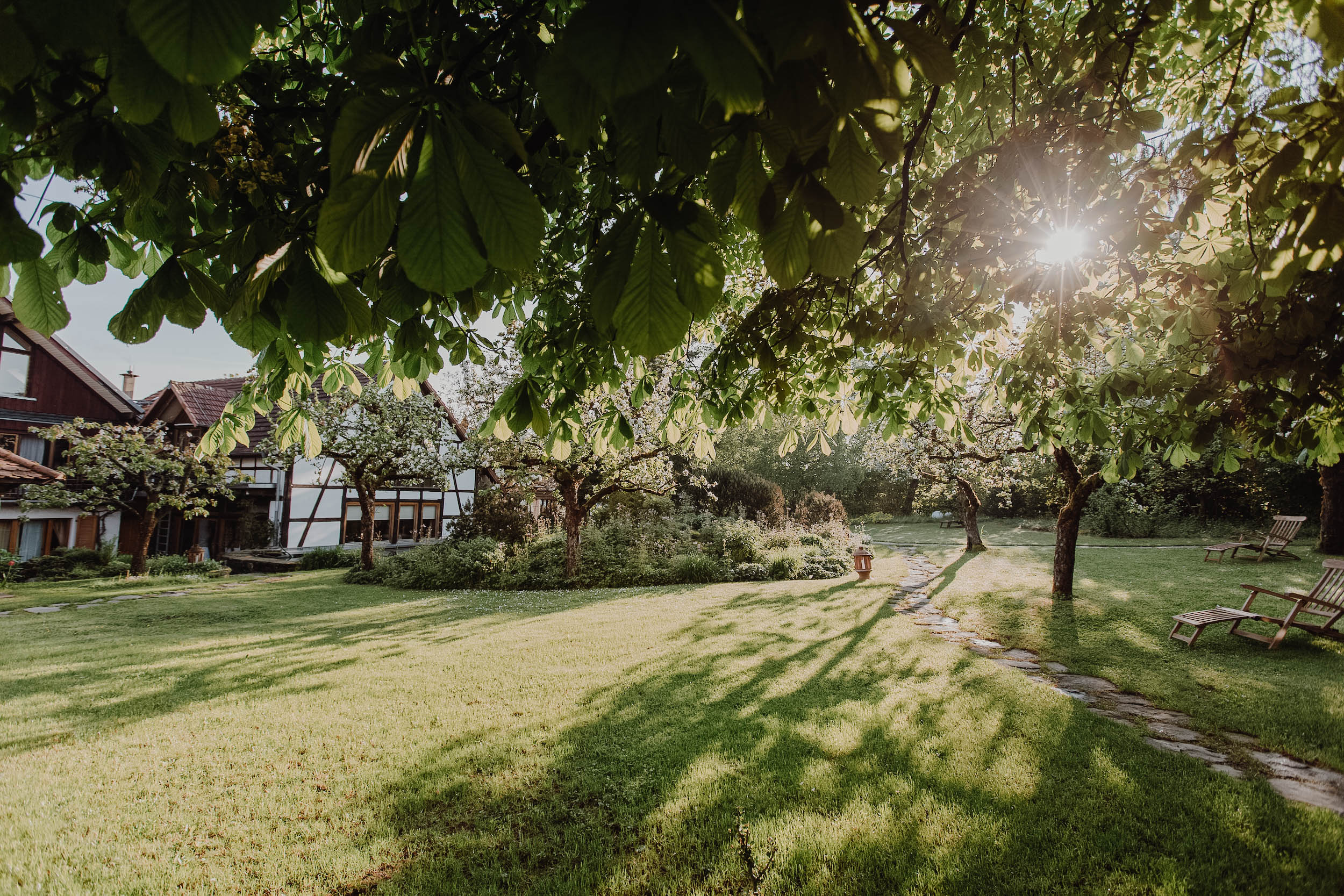 Ayurveda-Retreat-Mady–2