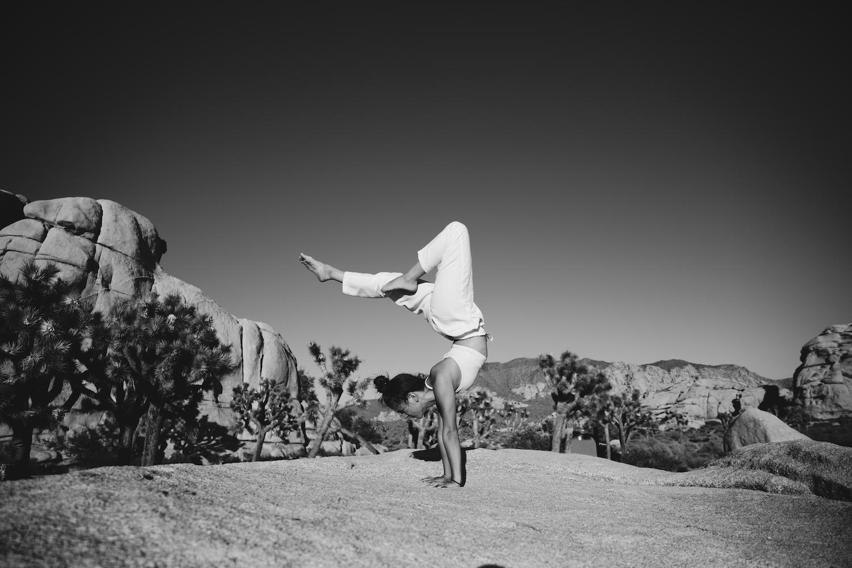 08-handstand-joshuatree Klein